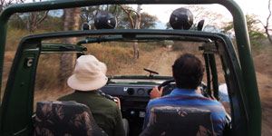 jeep safari in mazinagudi